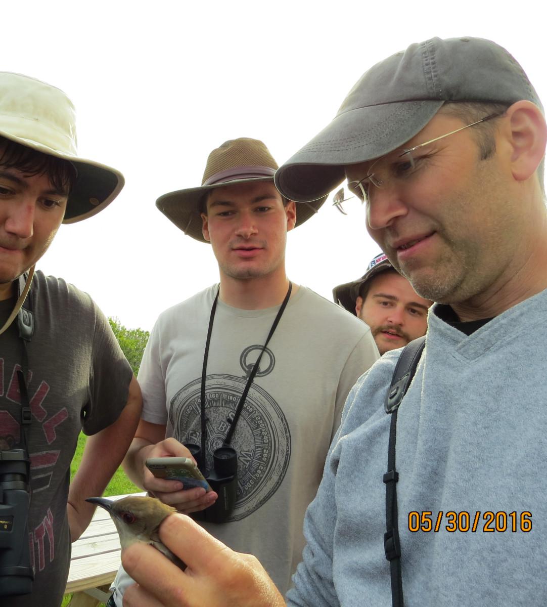 David Bonter and Field Ornithology students enjoying a rare occurrence