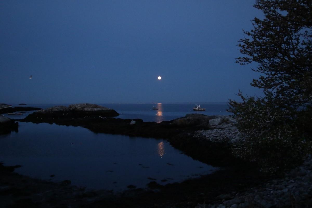 Island moonset, early Saturday morning