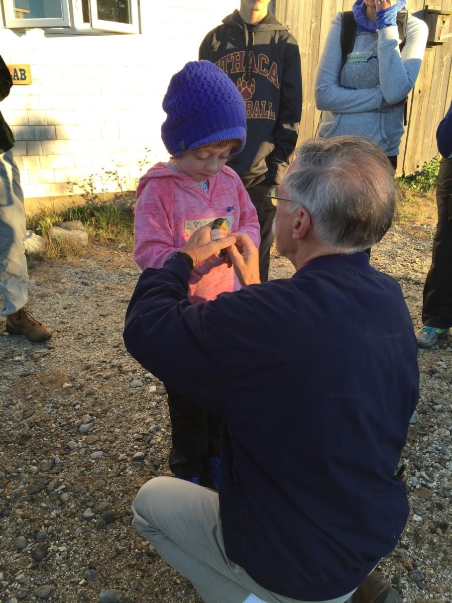 SeaShoaler learning to release a bird