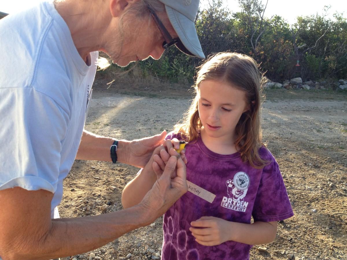 Kelley releasing a bird