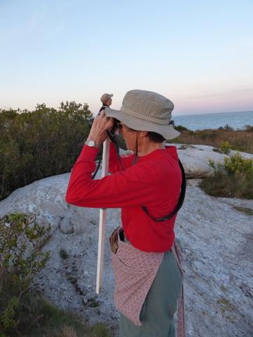 Martha birding